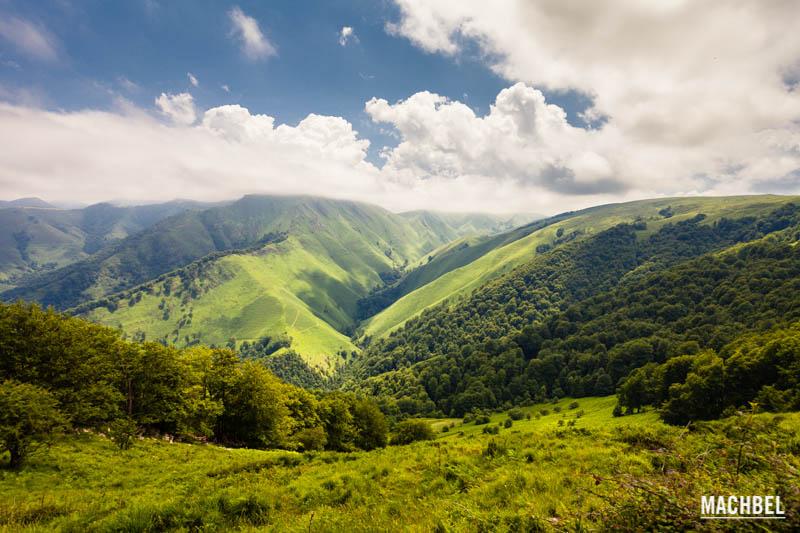 Selva de Irati in Navarra - Foto: Victor Gomez