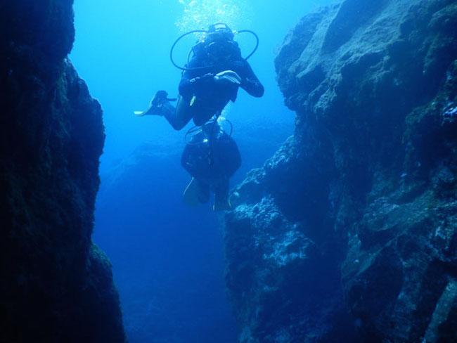 De fascinerende onderwaterwereld langs de kust van La Palma