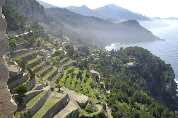 Unieke terraslandbouw in de Serra de Tramuntana op Mallorca