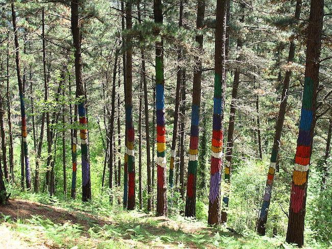 Kunst in de natuur in het Oma bos in Baskenland (Noord Spanje)