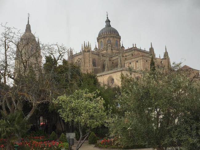 Botanische tuin achter de kathedralen van Salamanca (Midden Spanje)