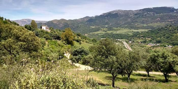 Ukulandia - rustgevend Nederlandstalig paradijsje in de bergen van Málaga (Andalusië, Zuid Spanje)