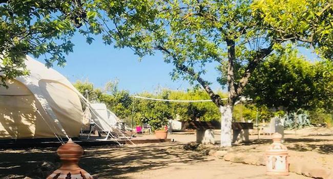 3 glamping tenten in de Mediterrane tuin van Glamping La Nogala in Alhaurín el Grande (Malaga)