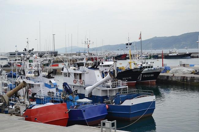 De haven van vissersdorp Getaria in Baskenland (Noord Spanje)