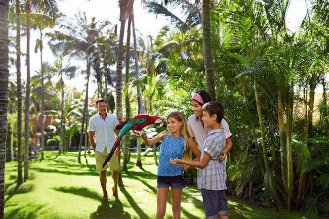 Het Loro park op Tenerife, een van de mooiste dierentuinen van Europa.