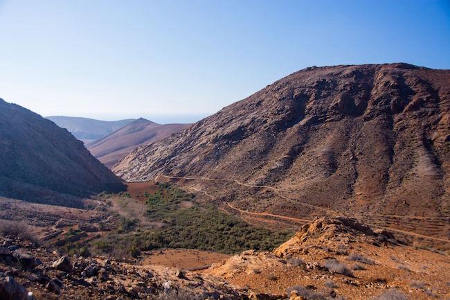 Fuerteventura's oase in het Las Peñitas ravijn
