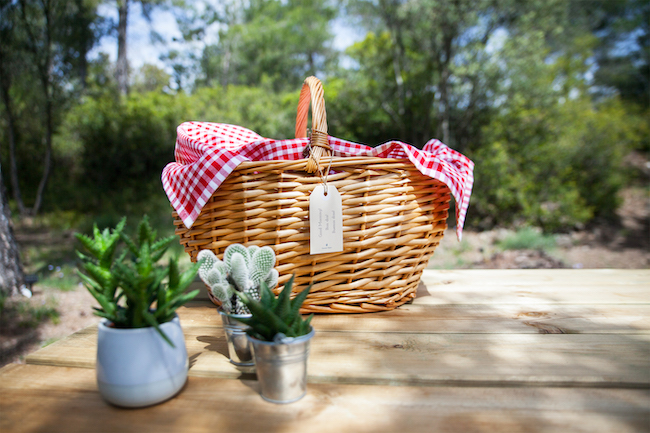 Ontbijtmand Forest Days Glamping