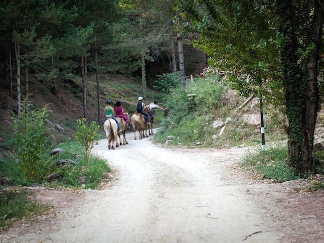 Paardrijtochten vanuit natuurcamping Manso Coguleras