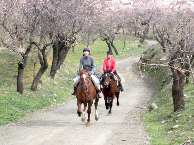 Paardrijden in omgeving Cortijo la Balsa