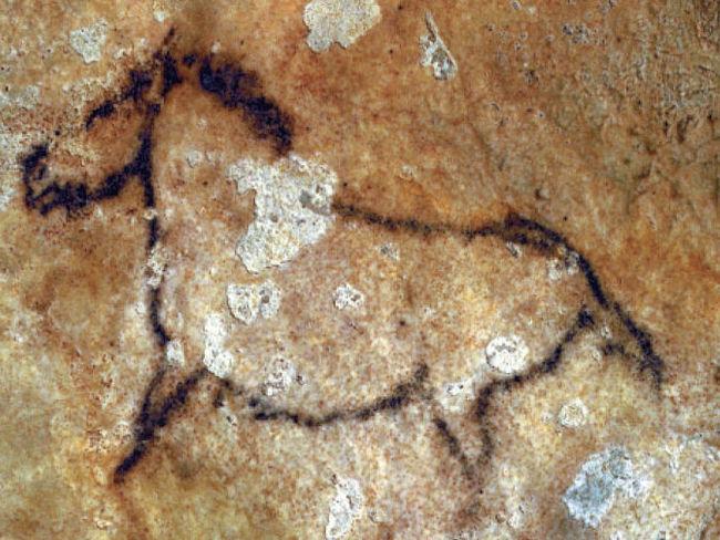 Een prehistorische grotschildering in de Santimamiñe grot in Baskenland (Noord Spanje)