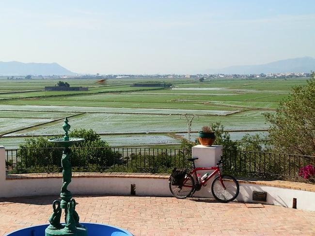 Rijstvelden ten zuiden van de stad Valencia