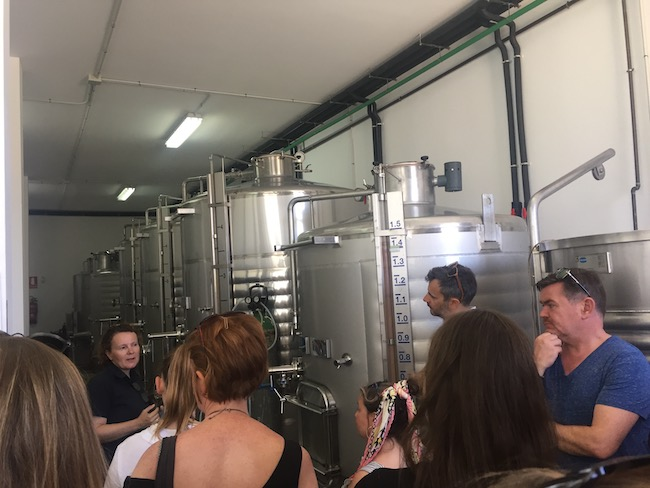 Moderne roestvrijstalen wijntanks in Bodegas Bentomiz