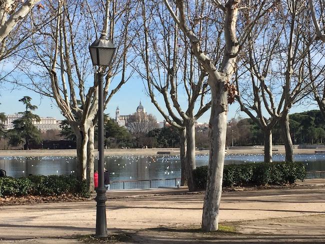 Koninklijk Paleis van Madrid en Almudena kathedraal vanaf het meer van Casa del Campo