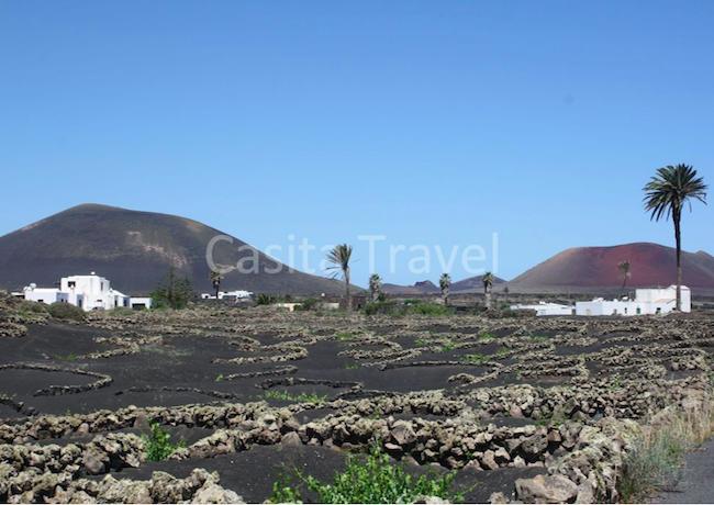 Het vakantiepark ligt midden in het vulkanische wijngebied La Geria op Canarisch eiland Lanzarote