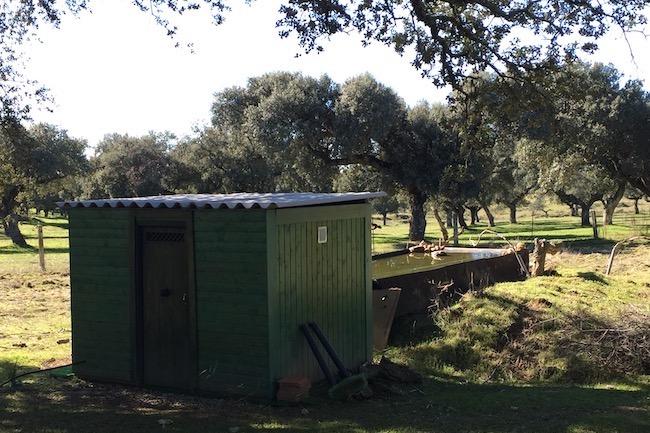 Schuilhut voor vogelaars en fotografen op Finca las Abubillas