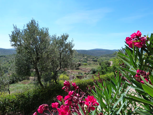Uitzicht vanaf vakantiehuis Casa del Maestro in Juseu