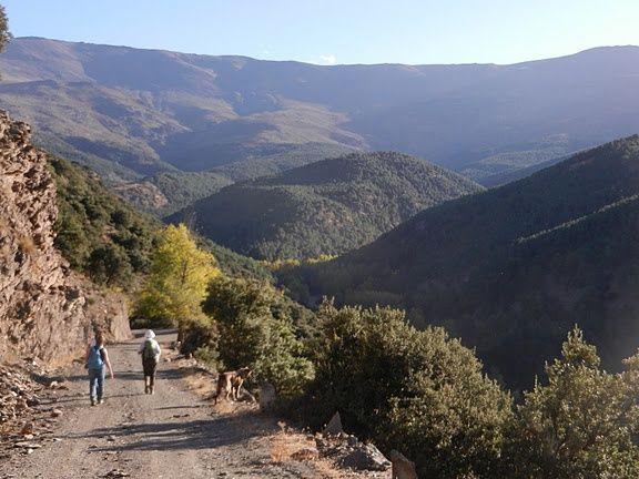 Wandelen in omgeving cortijo La Balsa