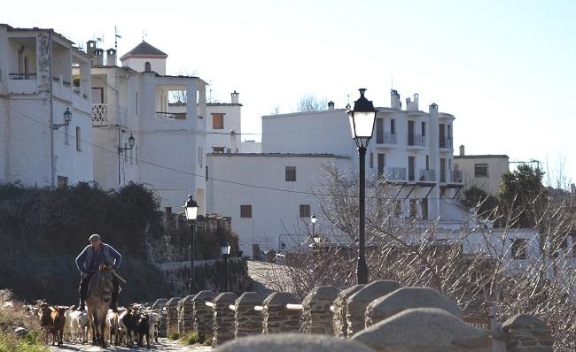 capileira-wit-dorp-alpujarra-andalusie-foto-spainmadeforyou