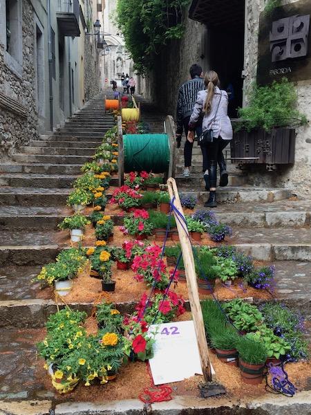 Bloemversiering trappen Sant Martí Seminari kerk (Girona Temps de Flors 2019)